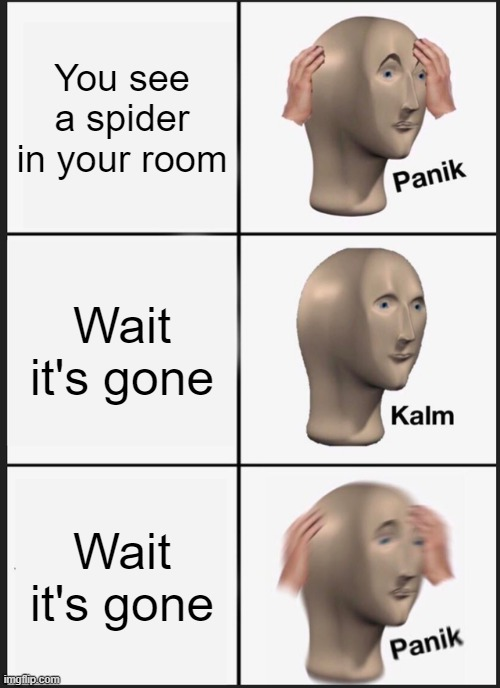 You see a spider... |  You see a spider in your room; Wait it's gone; Wait it's gone | image tagged in memes,panik kalm panik | made w/ Imgflip meme maker