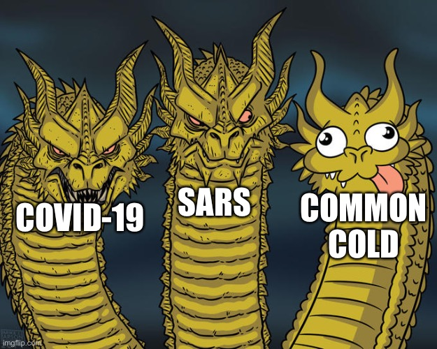 Coronavirus Family |  SARS; COMMON COLD; COVID-19 | image tagged in three-headed dragon,covid-19,coronavirus,corona virus,virus | made w/ Imgflip meme maker