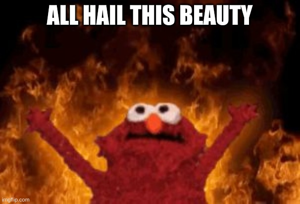 all hail hell elmo | ALL HAIL THIS BEAUTY | image tagged in all hail hell elmo | made w/ Imgflip meme maker