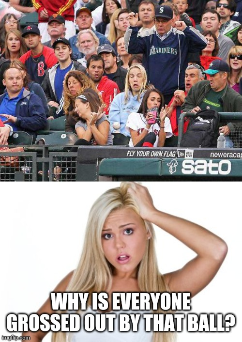 DON'T TOUCH IT |  WHY IS EVERYONE GROSSED OUT BY THAT BALL? | image tagged in dumb blonde,memes,baseball,catch,crowd | made w/ Imgflip meme maker
