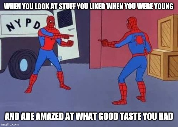 Spiderman mirror |  WHEN YOU LOOK AT STUFF YOU LIKED WHEN YOU WERE YOUNG; AND ARE AMAZED AT WHAT GOOD TASTE YOU HAD | image tagged in spiderman mirror | made w/ Imgflip meme maker