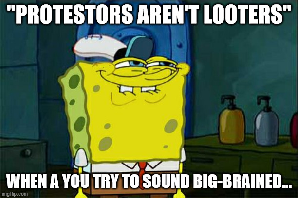 "Virtue Signalling like it's 2016 |  ""PROTESTORS AREN'T LOOTERS""; WHEN A YOU TRY TO SOUND BIG-BRAINED... 