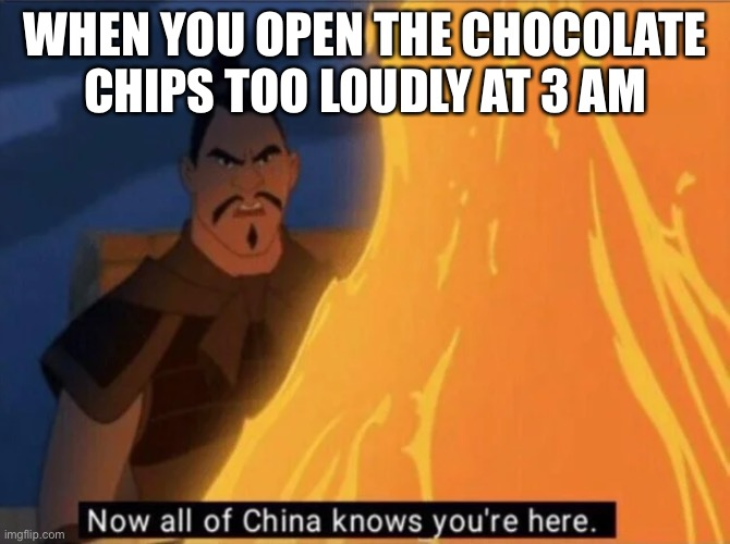 Now all of China knows you're here |  WHEN YOU OPEN THE CHOCOLATE CHIPS TOO LOUDLY AT 3 AM | image tagged in now all of china knows you're here | made w/ Imgflip meme maker