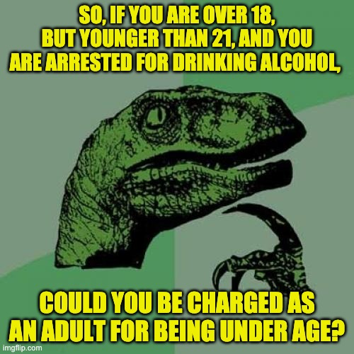 Back in my day, the legal drinking age was 18. |  SO, IF YOU ARE OVER 18, BUT YOUNGER THAN 21, AND YOU ARE ARRESTED FOR DRINKING ALCOHOL, COULD YOU BE CHARGED AS AN ADULT FOR BEING UNDER AGE? | image tagged in memes,philosoraptor | made w/ Imgflip meme maker