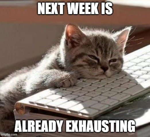 Tired Cat |  NEXT WEEK IS; ALREADY EXHAUSTING | image tagged in tired cat | made w/ Imgflip meme maker