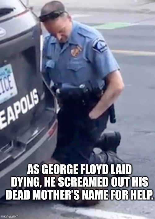 AS GEORGE FLOYD LAID DYING, HE SCREAMED OUT HIS DEAD MOTHER'S NAME FOR HELP. | image tagged in floyd,george floyd,police brutality,i cant breathe,black lives matter | made w/ Imgflip meme maker