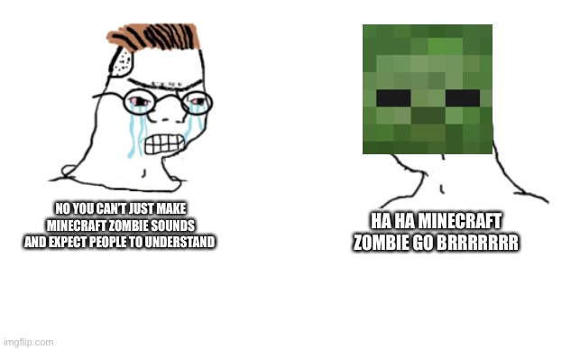 haha brrrrrrr |  HA HA MINECRAFT ZOMBIE GO BRRRRRRR; NO YOU CAN'T JUST MAKE MINECRAFT ZOMBIE SOUNDS AND EXPECT PEOPLE TO UNDERSTAND | image tagged in haha brrrrrrr | made w/ Imgflip meme maker