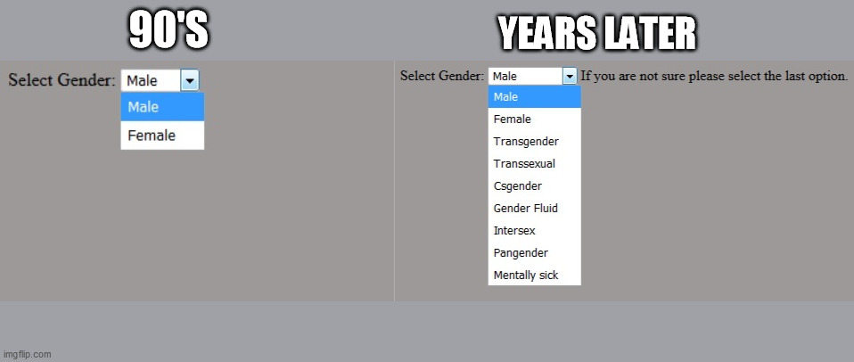 Select Gender |  90'S; YEARS LATER | image tagged in gays,homosexual,homosexuality,shemale,mental illness,covid-19 | made w/ Imgflip meme maker