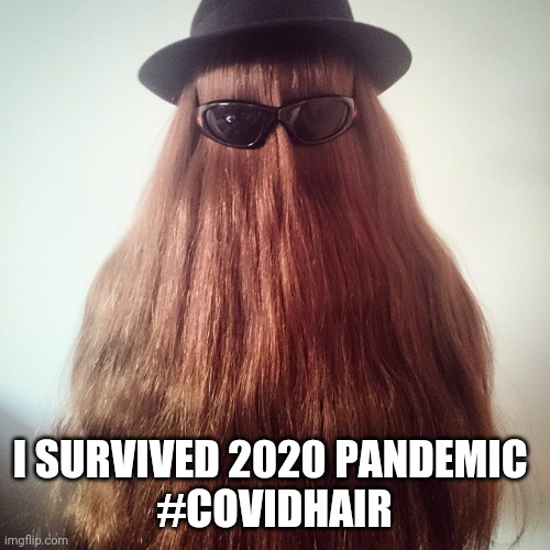 cousin it |  I SURVIVED 2020 PANDEMIC  #COVIDHAIR | image tagged in cousin it,coronavirus,covid-19,haircut,hair,hairbrush | made w/ Imgflip meme maker