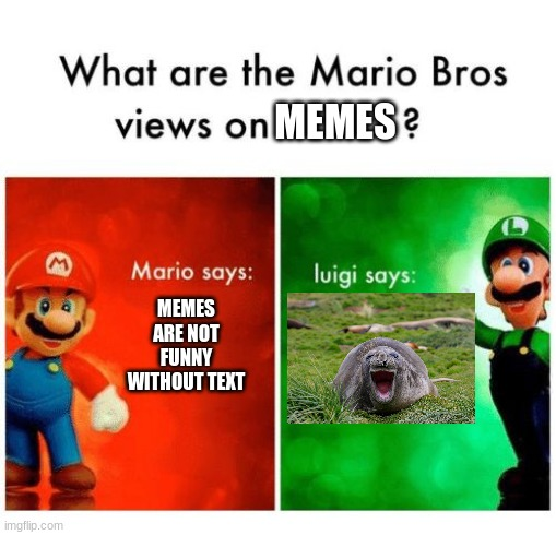 Mario says Luigi says |  MEMES; MEMES ARE NOT FUNNY WITHOUT TEXT | image tagged in mario says luigi says | made w/ Imgflip meme maker