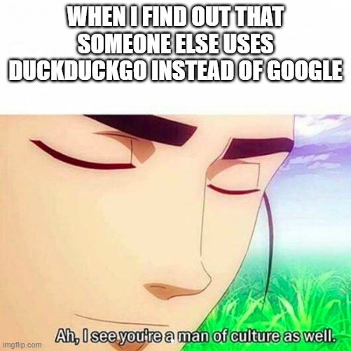 WHEN I FIND OUT THAT SOMEONE ELSE USES DUCKDUCKGO INSTEAD OF GOOGLE | image tagged in ah i see you are a man of culture as well | made w/ Imgflip meme maker