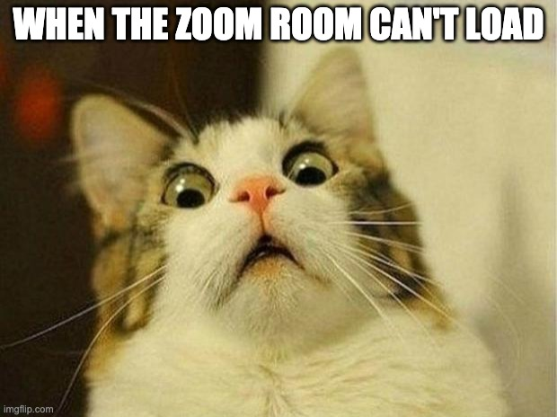 Scared Cat |  WHEN THE ZOOM ROOM CAN'T LOAD | image tagged in memes,scared cat | made w/ Imgflip meme maker