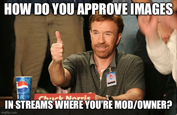 Chuck Norris Approves |  HOW DO YOU APPROVE IMAGES; IN STREAMS WHERE YOU'RE MOD/OWNER? | image tagged in memes,chuck norris approves,chuck norris | made w/ Imgflip meme maker