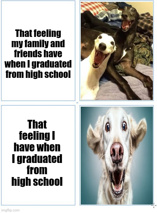 4 square grid |  That feeling my family and friends have when I graduated from high school; That feeling I have when I graduated from high school | image tagged in 4 square grid,graduation,high school,funny,memes,dogs | made w/ Imgflip meme maker
