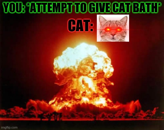 Giving cats baths |  CAT:; YOU: *ATTEMPT TO GIVE CAT BATH* | image tagged in memes,nuclear explosion,cat,cats,scumbag cat | made w/ Imgflip meme maker