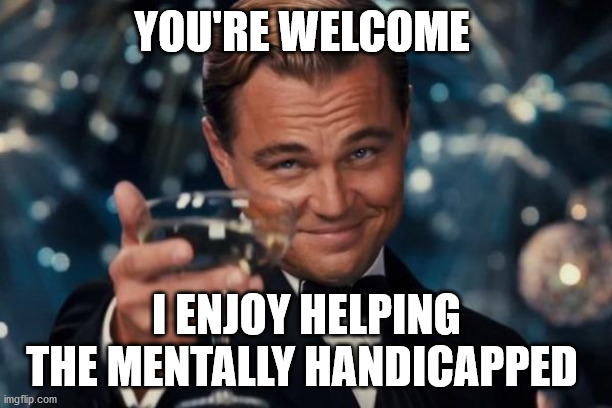 YOU'RE WELCOME I ENJOY HELPING THE MENTALLY HANDICAPPED | image tagged in memes,leonardo dicaprio cheers | made w/ Imgflip meme maker