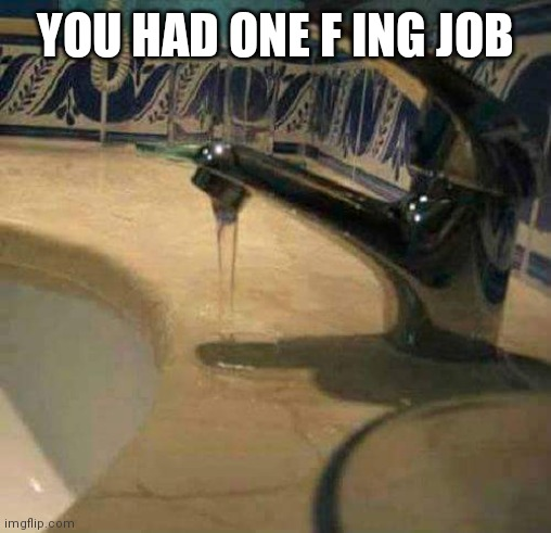 You had one job! |  YOU HAD ONE F ING JOB | image tagged in you had one job | made w/ Imgflip meme maker