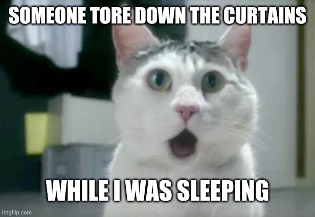 OMG Cat |  SOMEONE TORE DOWN THE CURTAINS; WHILE I WAS SLEEPING | image tagged in memes,omg cat | made w/ Imgflip meme maker