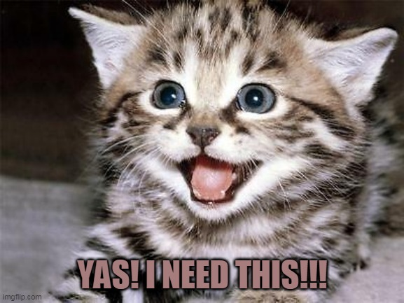 Happy Cat |  YAS! I NEED THIS!!! | image tagged in happy cat | made w/ Imgflip meme maker