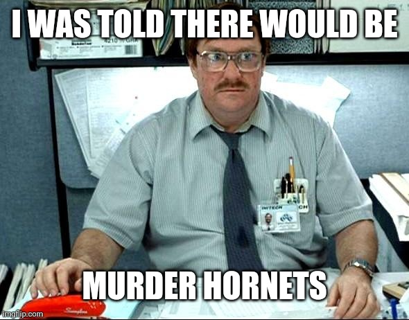 Murder Hornets Story Disappointment |  I WAS TOLD THERE WOULD BE; MURDER HORNETS | image tagged in memes,i was told there would be,murder hornet,disappointment | made w/ Imgflip meme maker