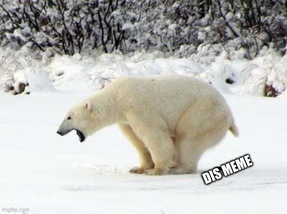 DIS MEME | image tagged in polar bear shits in the snow | made w/ Imgflip meme maker