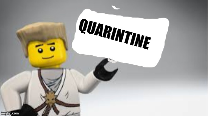 Ladies and gentlemen, something that lasts forever! |  QUARINTINE | image tagged in zane,ninjago | made w/ Imgflip meme maker