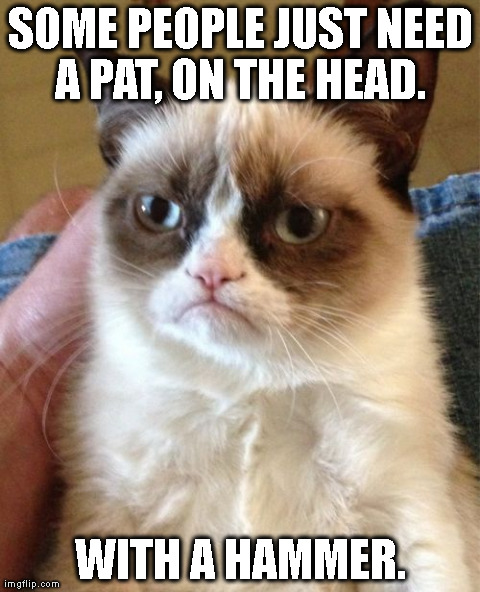 Grumpy Cat | SOME PEOPLE JUST NEED A PAT, ON THE HEAD.  WITH A HAMMER. | image tagged in memes,grumpy cat | made w/ Imgflip meme maker