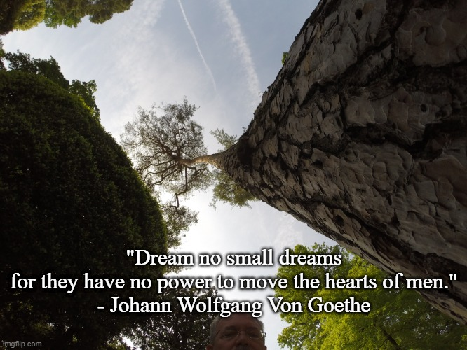 "Dream Big |  ""Dream no small dreams for they have no power to move the hearts of men."" - Johann Wolfgang Von Goethe 