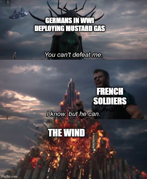 You can't defeat me |  GERMANS IN WWI DEPLOYING MUSTARD GAS; FRENCH SOLDIERS; THE WIND | image tagged in you can't defeat me,memes,wwi,history,mustard,world war i | made w/ Imgflip meme maker