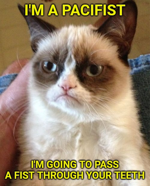 Grumpy Cat |  I'M A PACIFIST; I'M GOING TO PASS A FIST THROUGH YOUR TEETH | image tagged in memes,grumpy cat | made w/ Imgflip meme maker