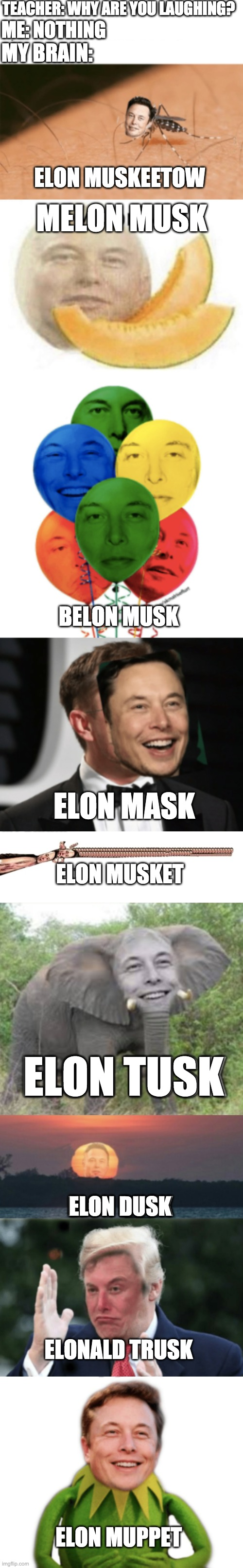 Elon Musk |  TEACHER: WHY ARE YOU LAUGHING? ME: NOTHING; MY BRAIN:; ELON MUSKEETOW; MELON MUSK; BELON MUSK; ELON MASK; ELON MUSKET; ELON TUSK; ELON DUSK; ELONALD TRUSK; ELON MUPPET | image tagged in memes,funny,elon musk,fun,front page | made w/ Imgflip meme maker