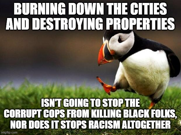 Unpopular Opinion Puffin Meme |  BURNING DOWN THE CITIES AND DESTROYING PROPERTIES; ISN'T GOING TO STOP THE CORRUPT COPS FROM KILLING BLACK FOLKS, NOR DOES IT STOPS RACISM ALTOGETHER | image tagged in memes,unpopular opinion puffin,racism | made w/ Imgflip meme maker
