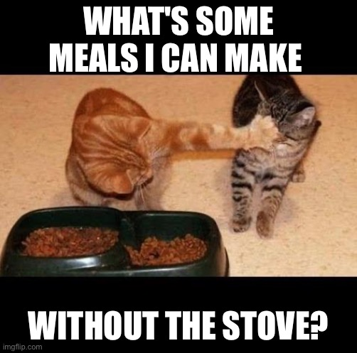 cats share food |  WHAT'S SOME MEALS I CAN MAKE; WITHOUT THE STOVE? | image tagged in cats share food | made w/ Imgflip meme maker