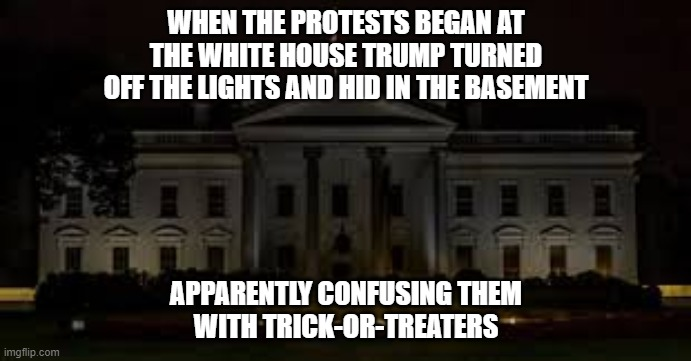 Trick-or-Trump |  WHEN THE PROTESTS BEGAN AT THE WHITE HOUSE TRUMP TURNED OFF THE LIGHTS AND HID IN THE BASEMENT; APPARENTLY CONFUSING THEM  WITH TRICK-OR-TREATERS | image tagged in donald trump,coward,hiding,protesters,police brutality | made w/ Imgflip meme maker