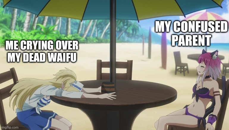 They still confused |  MY CONFUSED PARENT; ME CRYING OVER MY DEAD WAIFU | image tagged in meme,memes,anime,animeme,anime meme,anime memes,lostpause | made w/ Imgflip meme maker