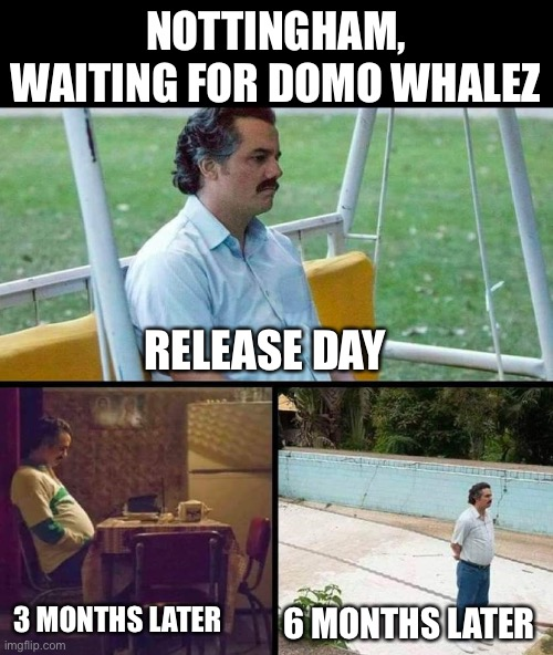 Lonely guy |  NOTTINGHAM, WAITING FOR DOMO WHALEZ; RELEASE DAY; 3 MONTHS LATER; 6 MONTHS LATER | image tagged in lonely guy | made w/ Imgflip meme maker