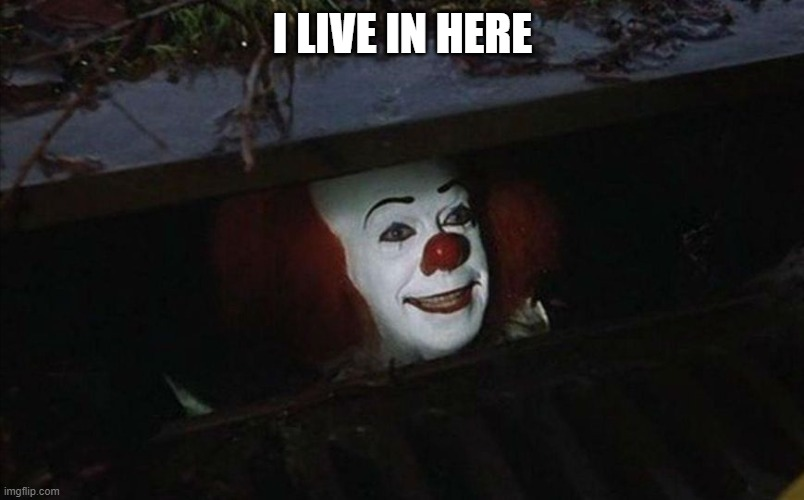 Clown in sewer | I LIVE IN HERE | image tagged in clown in sewer | made w/ Imgflip meme maker
