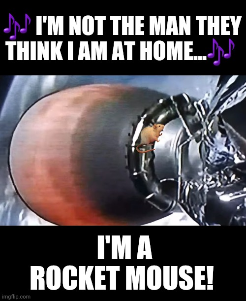The Hollywood basement has mice |  🎶 I'M NOT THE MAN THEY THINK I AM AT HOME...🎶; I'M A ROCKET MOUSE! | image tagged in elon musk,spacex,shenanigans,elton john,rocket,mouse | made w/ Imgflip meme maker
