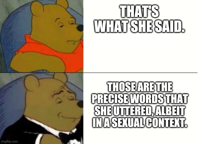Fancy Winnie The Pooh Meme |  THAT'S WHAT SHE SAID. THOSE ARE THE PRECISE WORDS THAT SHE UTTERED, ALBEIT IN A SEXUAL CONTEXT. | image tagged in fancy winnie the pooh meme | made w/ Imgflip meme maker