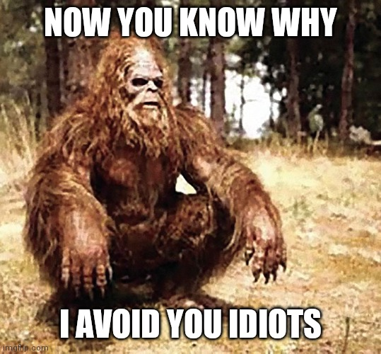 Big Foot |  NOW YOU KNOW WHY; I AVOID YOU IDIOTS | image tagged in human stupidity | made w/ Imgflip meme maker