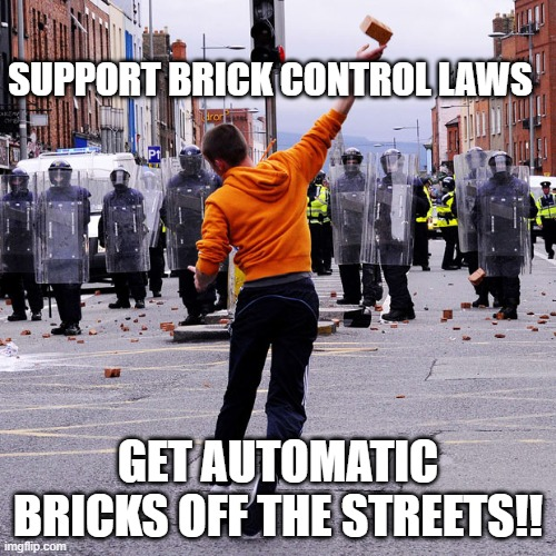 And close the brick show loopholes! |  SUPPORT BRICK CONTROL LAWS; GET AUTOMATIC BRICKS OFF THE STREETS!! | image tagged in brick,gun control | made w/ Imgflip meme maker