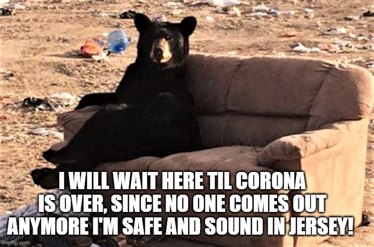Jersey bears |  I WILL WAIT HERE TIL CORONA IS OVER, SINCE NO ONE COMES OUT ANYMORE I'M SAFE AND SOUND IN JERSEY! | image tagged in lisa payne,new jersey memory page,new jersey,urhome | made w/ Imgflip meme maker