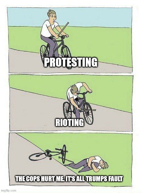 Rioting for dummies |  PROTESTING; RIOTING; THE COPS HURT ME. IT'S ALL TRUMPS FAULT | image tagged in bycycle meme,protesting,protesters,donald trump,blm,police brutality | made w/ Imgflip meme maker