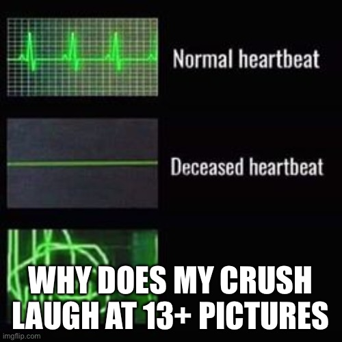 heartbeat rate |  WHY DOES MY CRUSH LAUGH AT 13+ PICTURES | image tagged in heartbeat rate | made w/ Imgflip meme maker