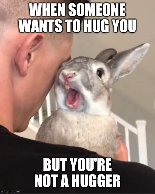 When You're Not a Hugger |  WHEN SOMEONE WANTS TO HUG YOU; BUT YOU'RE NOT A HUGGER | image tagged in hugs,not a hugger,funny memes,so true,so true memes,funny animals | made w/ Imgflip meme maker