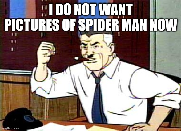 I WANT PICTURES OF SPIDERMAN | I DO NOT WANT PICTURES OF SPIDER MAN NOW | image tagged in i want pictures of spiderman | made w/ Imgflip meme maker