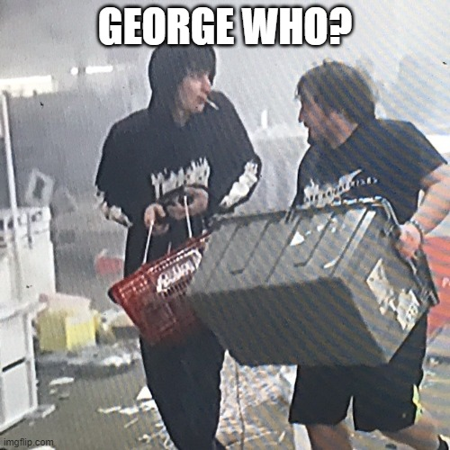 George Who? |  GEORGE WHO? | image tagged in riots,minnesota,looters,black lives matter,dirty cops,george | made w/ Imgflip meme maker