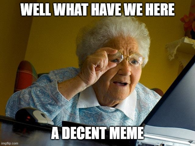 Grandma Finds The Internet Meme | WELL WHAT HAVE WE HERE A DECENT MEME | image tagged in memes,grandma finds the internet | made w/ Imgflip meme maker
