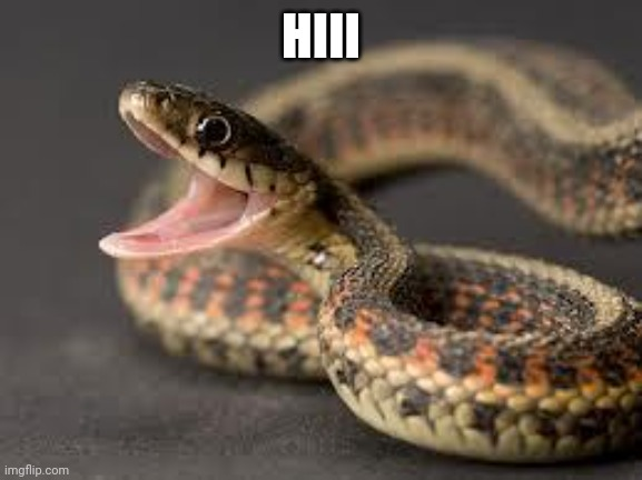 Happy snake |  HIII | image tagged in happy snake | made w/ Imgflip meme maker