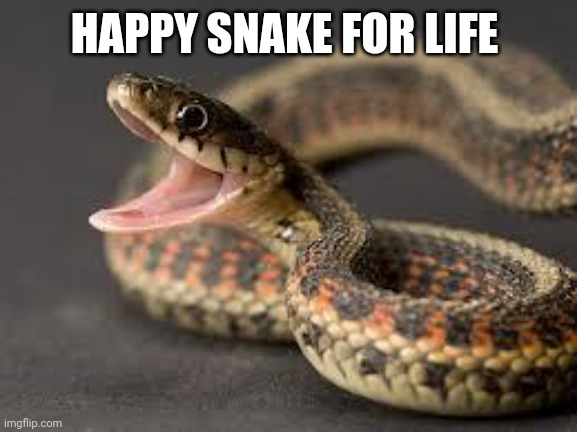Warning Snake |  HAPPY SNAKE FOR LIFE | image tagged in warning snake | made w/ Imgflip meme maker